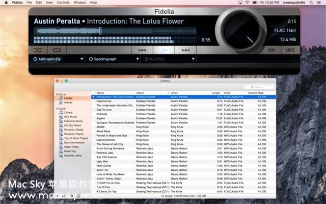苹果专业高清音乐播放器软件 Fidelia 1.6.5 Mac OS X
