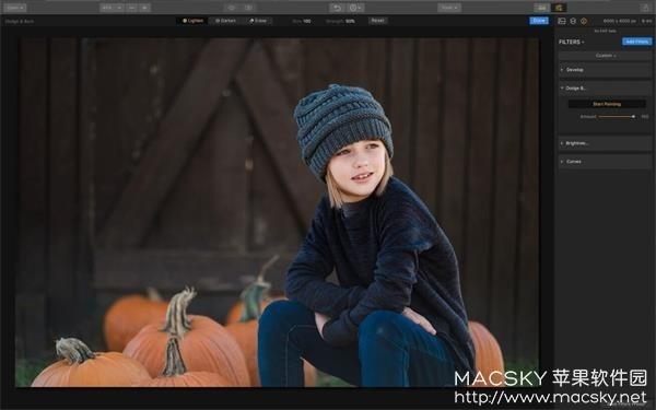 Luminar-2018_01 Luminar 2018 v1.1.1 (3090) Mac中文版 图像编辑处理软件